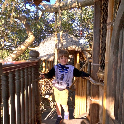 We had the tree house to ourselves